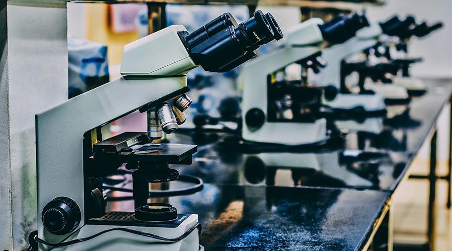 Avances recientes en biotecnología aplicados a la medicina